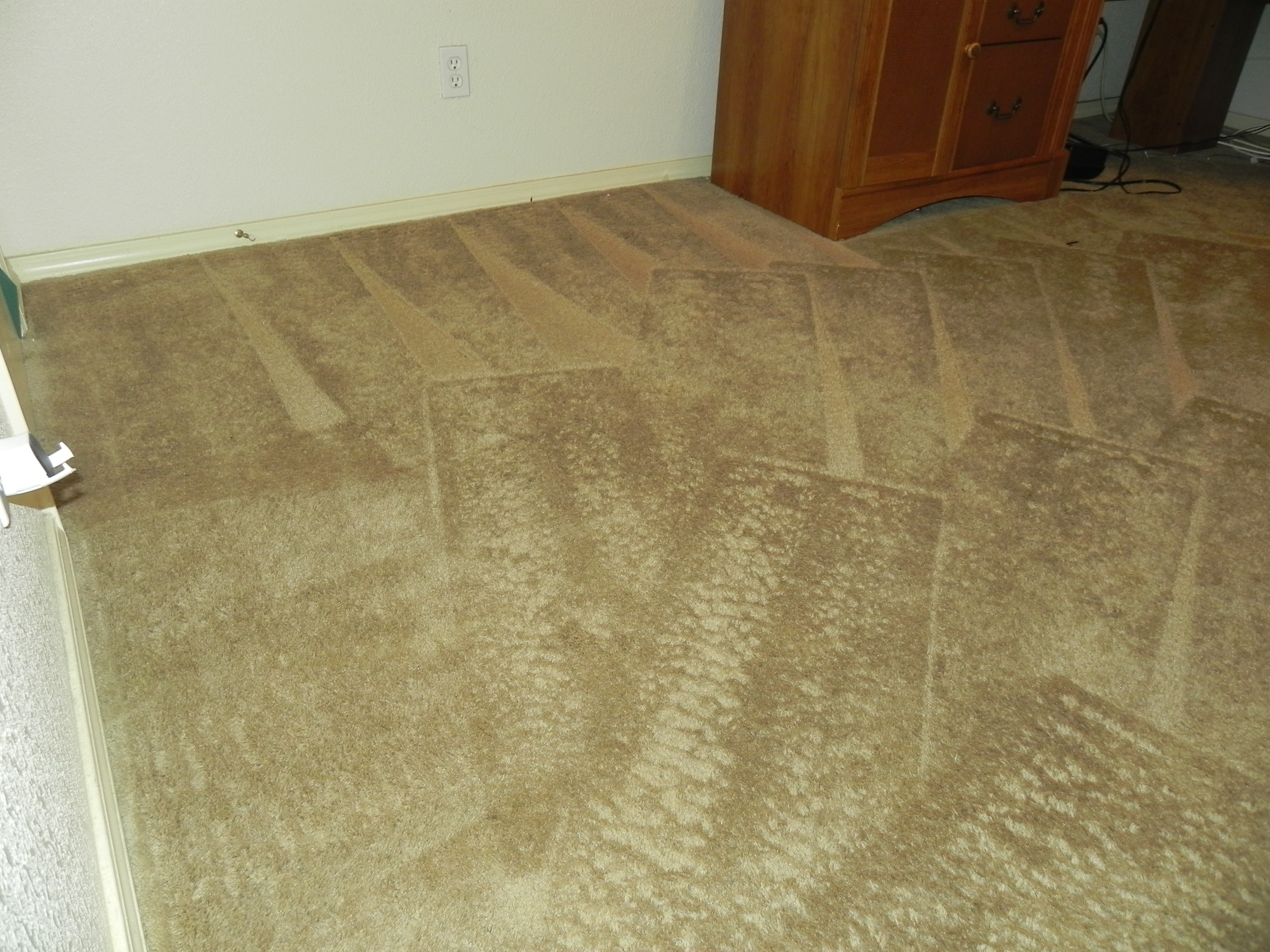 Color printing el paso tx - Beautiful Steam Cleaned Carpet In El Paso Home